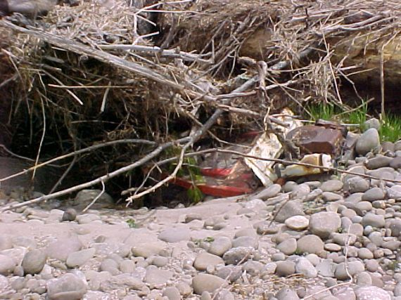 Below Reservoir Debris